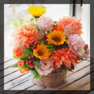 季節の花達で・・・